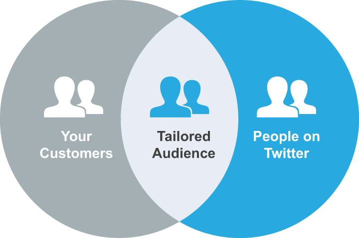 social-media-audiences